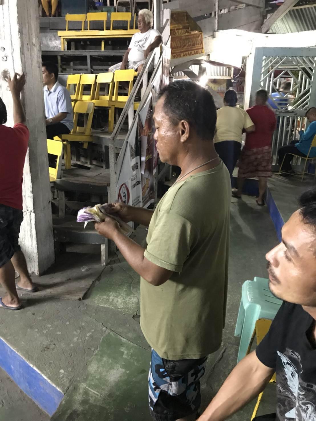 菲律賓遊學|在杜馬蓋地看海龜也看鬥雞!超新鮮