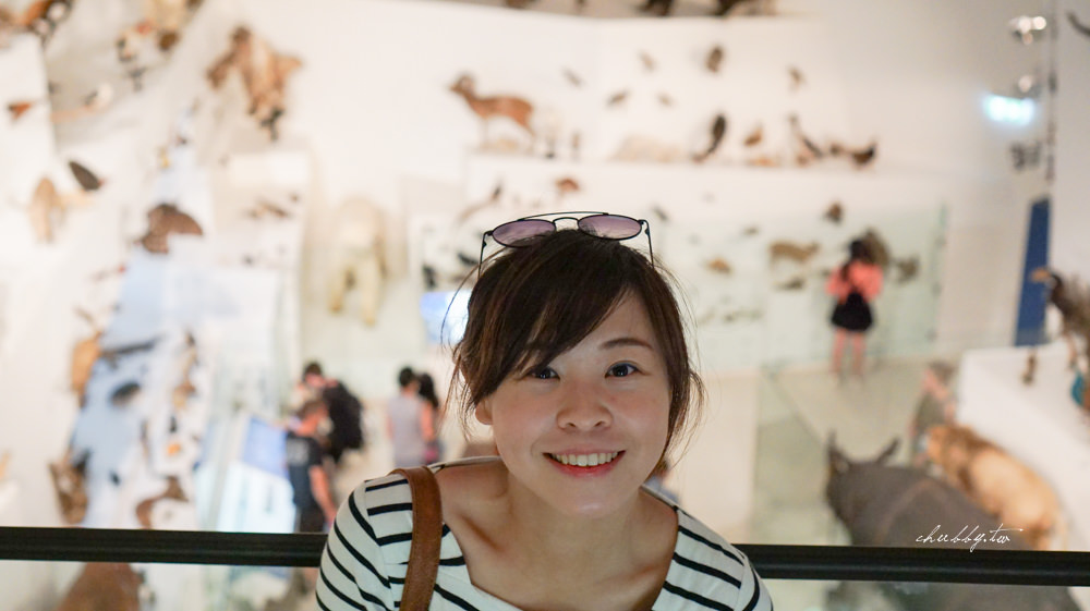 澳洲遊學│墨爾本怎麼玩系列-親子遊學必訪的墨爾本博物館Melbourne Museum
