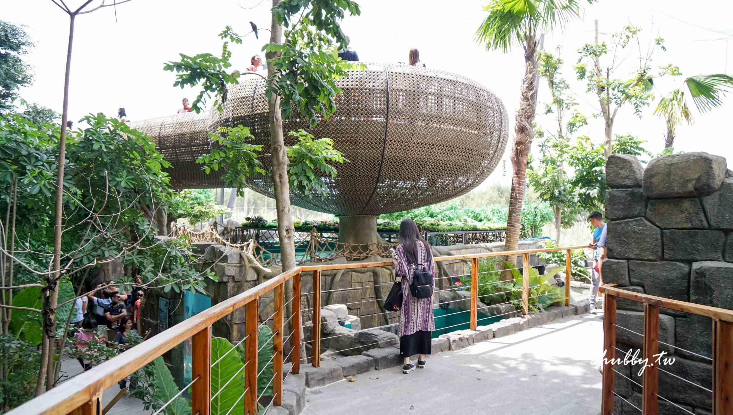 宿霧最適合親子的行程:宿霧海洋公園Cebu Ocean Park遊園心得、園區介紹
