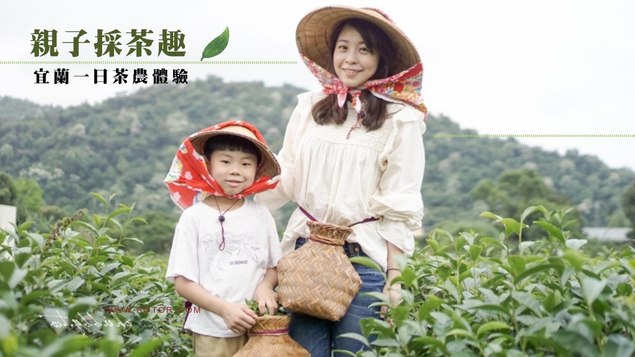 宜蘭親子體驗推薦:祥語有機農場,跟小孩當一日茶農親手採茶+做龍鬚糖!