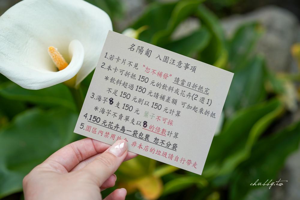 【名陽匍休閒農莊】台北陽明山海芋季最佳拍攝海芋景點!海芋田中的小木屋、在海芋田盪鞦韆(交通/票價/最美避開人潮的拍攝點教學)